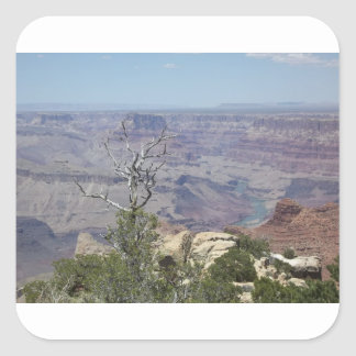 Grand Canyon Arizona Square Sticker