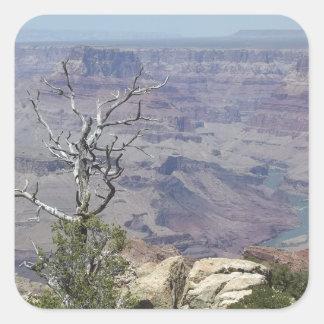 Grand Canyon Arizona Square Sticker