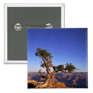Grand Canyon, Arizona, USA 15 Cm Square Badge