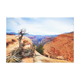 Grand Canyon Art Canvas Print