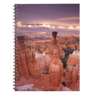 Grand Canyon during Golden Hour Notebooks