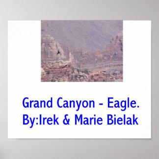 Grand Canyon Eagle. Poster
