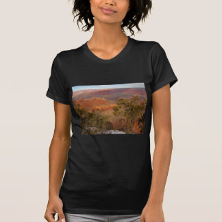 Grand Canyon from the Rim - Painted T-Shirt