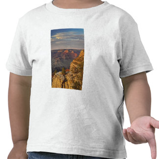 Grand Canyon from the south rim at sunset, 2 T-shirts