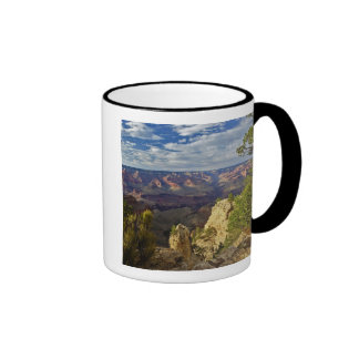 Grand Canyon from the south rim at sunset, 6 Mugs