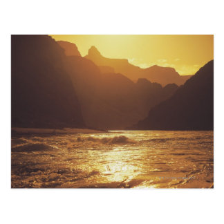 Grand Canyon National Park , Arizona , United Postcard