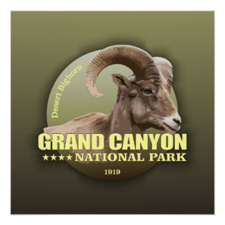 Grand Canyon NP (Bighorn) WT Poster