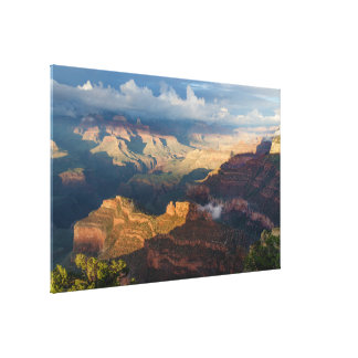 Grand Canyon South Rim from Powell Point Stretched Canvas Prints