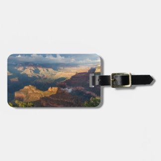 Grand Canyon South Rim from Powell Point Bag Tags