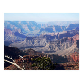 Grand Canyon - South Rim Postcard