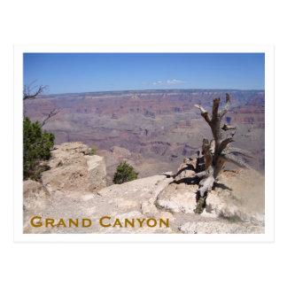 Grand Canyon, South Rim Postcard