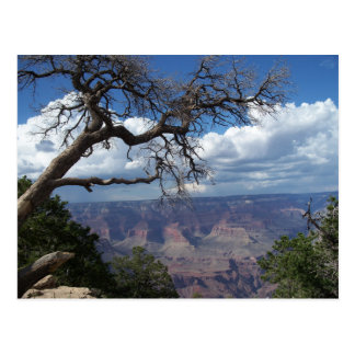 Grand Canyon The Painted Desert Arizona PostCard