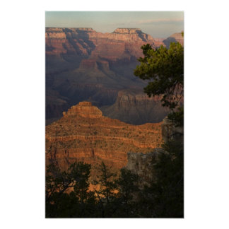 Grand Canyon View Poster
