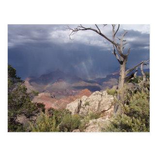 """""""Grand Canyon Views"""" Postcard"""