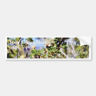 Grand Canyons Cliffs Hills Valleys Flowers Bumper Stickers