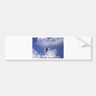 Grand Cayman Bird Bumper Sticker