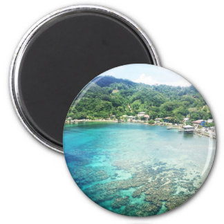 Grand Cayman Coral Reef 6 Cm Round Magnet