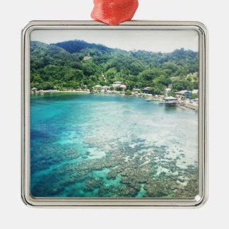 Grand Cayman Coral Reef Silver-Colored Square Decoration