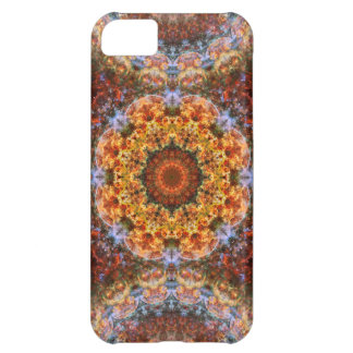 Grand Galactic Alignment Mandala iPhone 5C Case