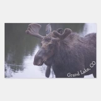 Grand Lake Moose Rectangular Sticker