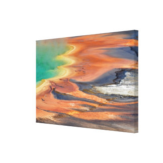 Grand Prismatic Spring Runoff Canvas Print