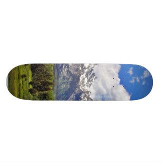 Grand Teton National Park. Custom Skateboard
