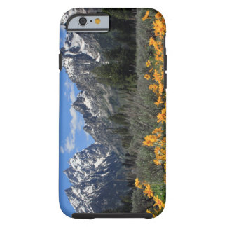Grand Teton National Park Tough iPhone 6 Case