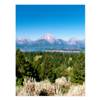 Grand Teton National Park Wyoming Postcard