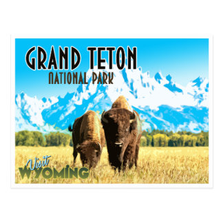 Grand Teton Park Wyoming Vintage Travel Postcard