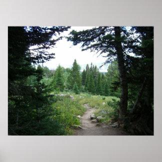 Grand Teton Trail Print
