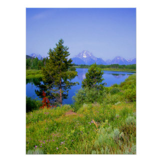 Grand Tetons in Summer Poster