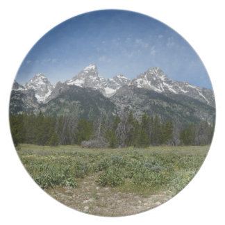 Grand Tetons National Park plate