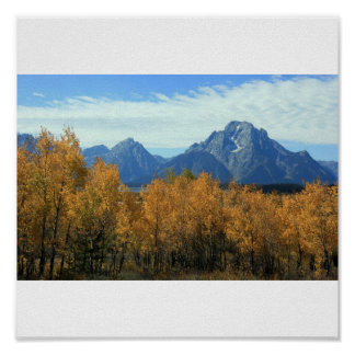 Grand Tetons With Aspens Posters