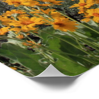 Grand Tetons With Snow and Spring Flowers Poster