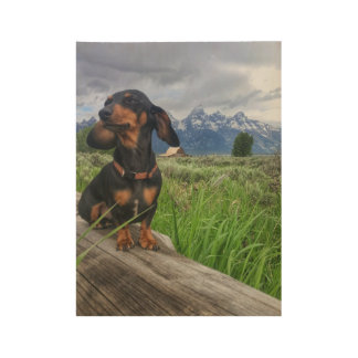 Grand Tetons Wood Poster