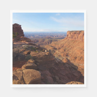 Grand View Point at Canyonlands National Park Disposable Serviettes