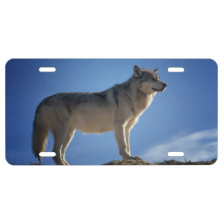 Grand Wolf License Plate
