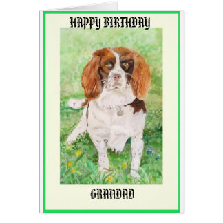 GRANDAD DOGGY BIRTHDAY CARD