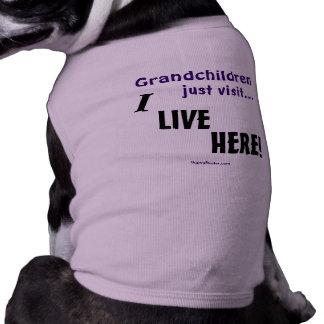 Grandchildren just visit..., I LIVE HERE! Sleeveless Dog Shirt