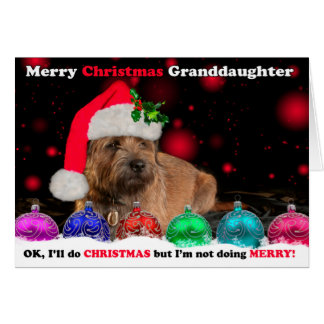Granddaughter Grumpy Border Terrier Dog In Santa H Card