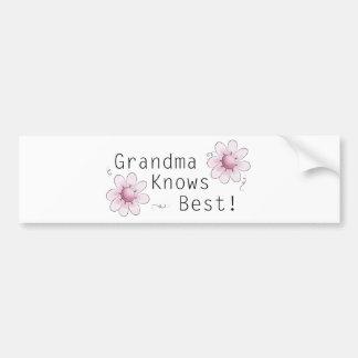 Grandma Knows Best Bumper Sticker