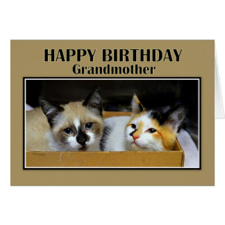 Grandmother Kittens in a Box Happy Birthday Greeting Card