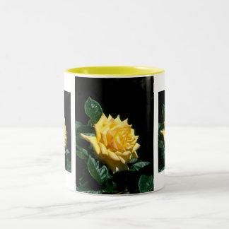 Grandpa Dickson hybrid tea rose Two-Tone Mug
