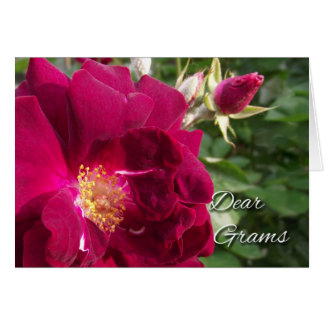 Grandparents Day for Grams, Red Rose and Bud Card