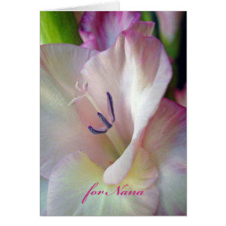 Grandparents Day for Nana, Pink Gladiolus Photo Card