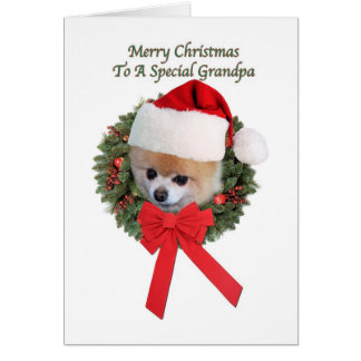 Grandpa's Pomeranian Dog Christmas Card