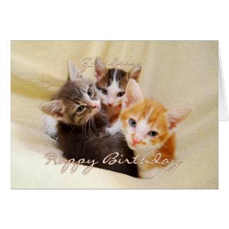 Grandson Happy Birthday Trio of Kittens Cards