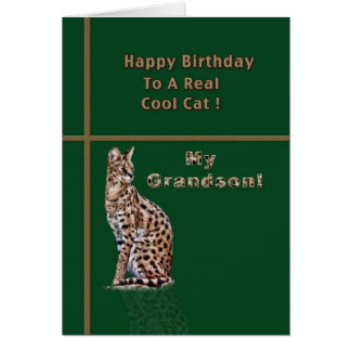 Grandson's Birthday Card with Ocelot