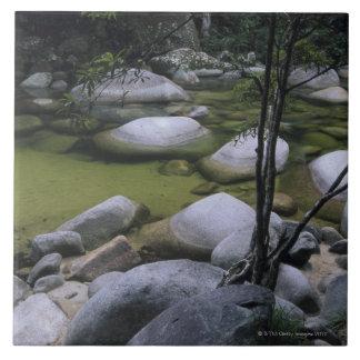 Granite Boulders in River Ceramic Tile