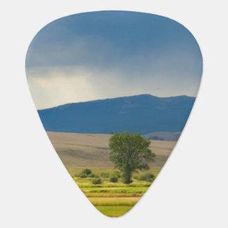 Granite County Montana Plectrum